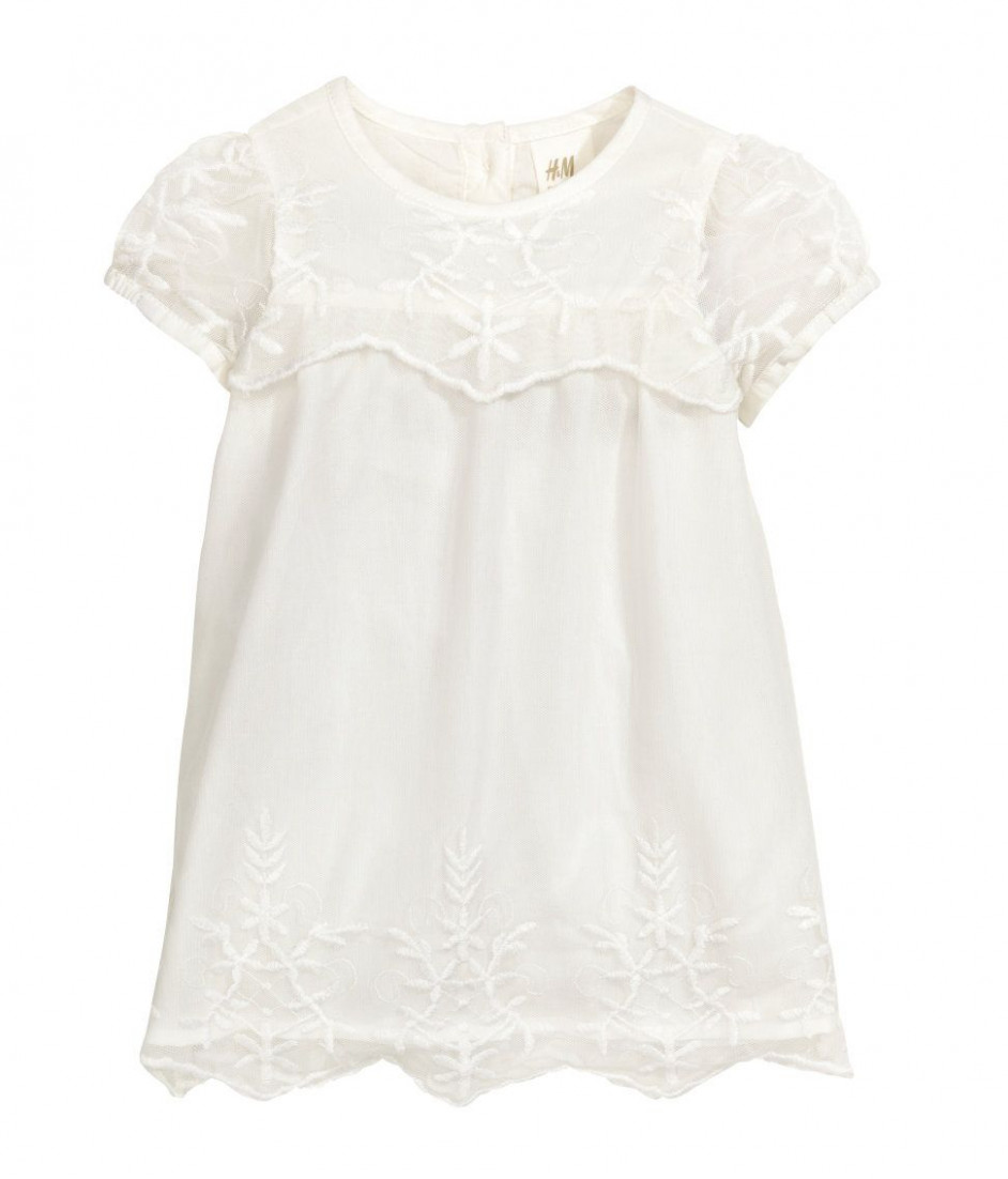 h&m embroidered tulle dress $10